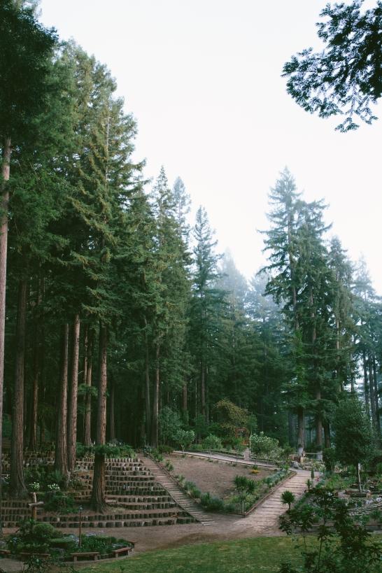 2015 Pistos Summer Retreat-2